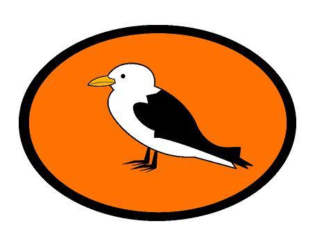Kittiwake Logo blog