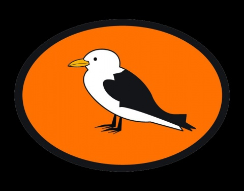 Kittiwake Logo Black Background
